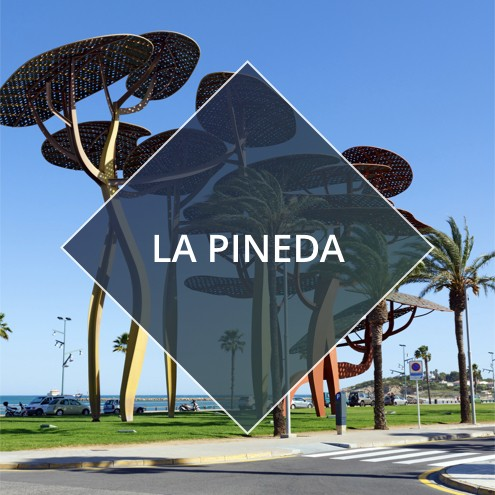 LA PINEDA